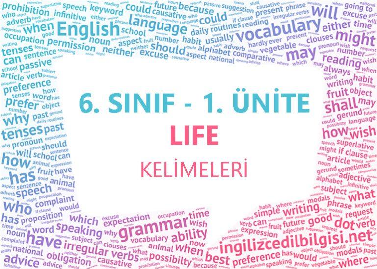 6. Sınıf İngilizce 1. Ünite Life Kelimeleri