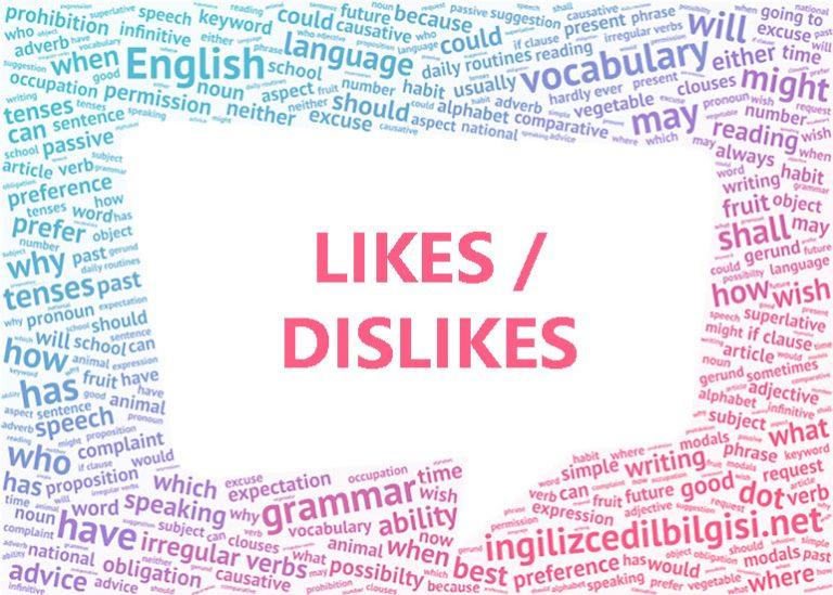 Likes / Dislikes