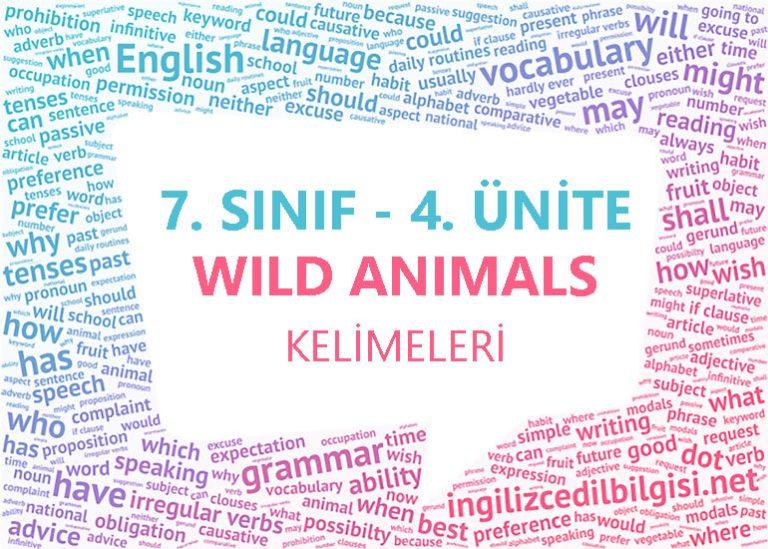 7. Sınıf İngilizce 4. Ünite Wild Animals Kelimeleri