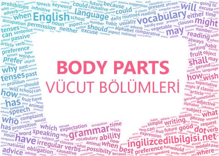 İngilizce Vücut Bölümleri – Body Parts