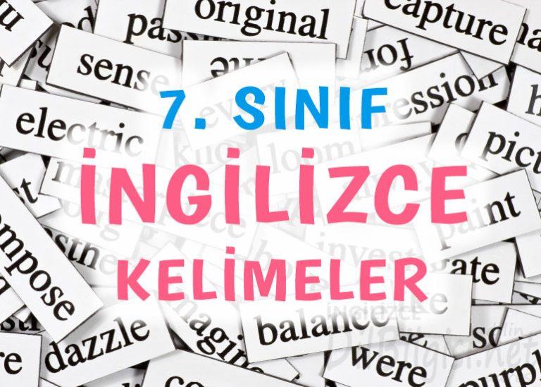 7. Sınıf İngilizce Kelimeler ve Anlamları